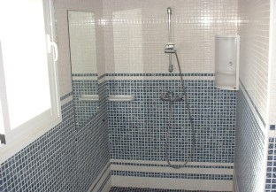 master bedroom walk in / roll in shower